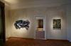 Sgroll Vidal, Ausstellungsansicht